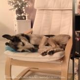 Menno - relaxing